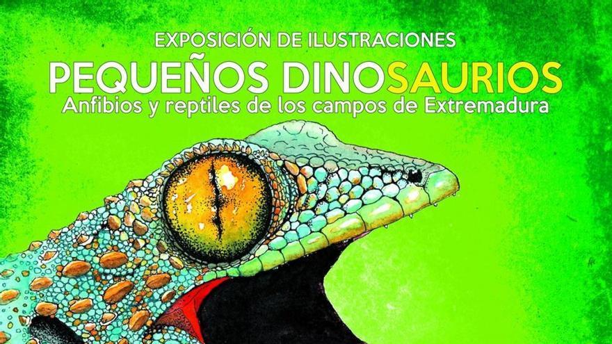Pequeños dinosaurios