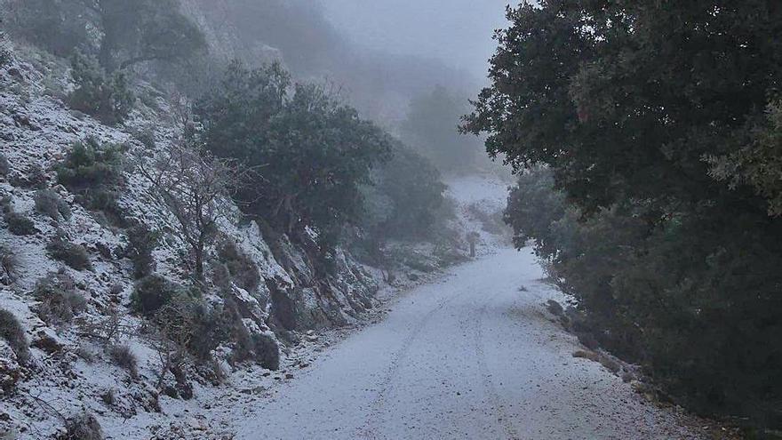 El tiempo en Alicante: Elevan a naranja la alerta por nieve  en el interior de la provincia