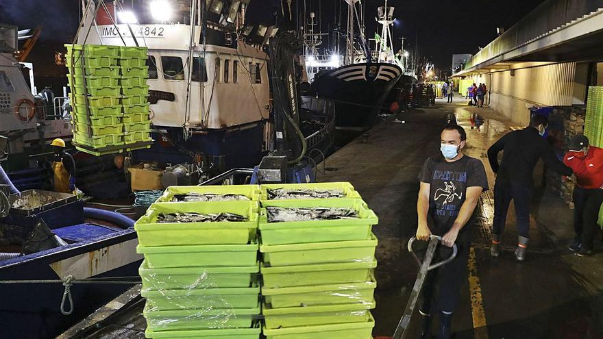 La flota de cerco pide el pago de 180.000 euros por el lucro cesante de la pandemia