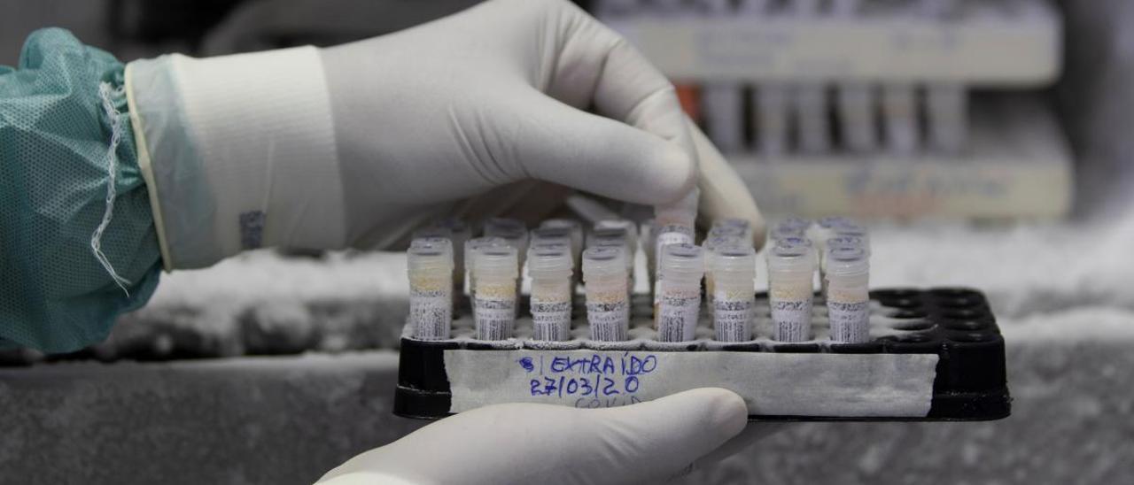 En la provincia de Alicante se han detectado tres nuevos casos en las últimas horas