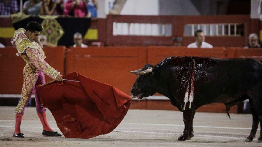 Palma de Mallorca erteilt Zustimmung für Stierkampf