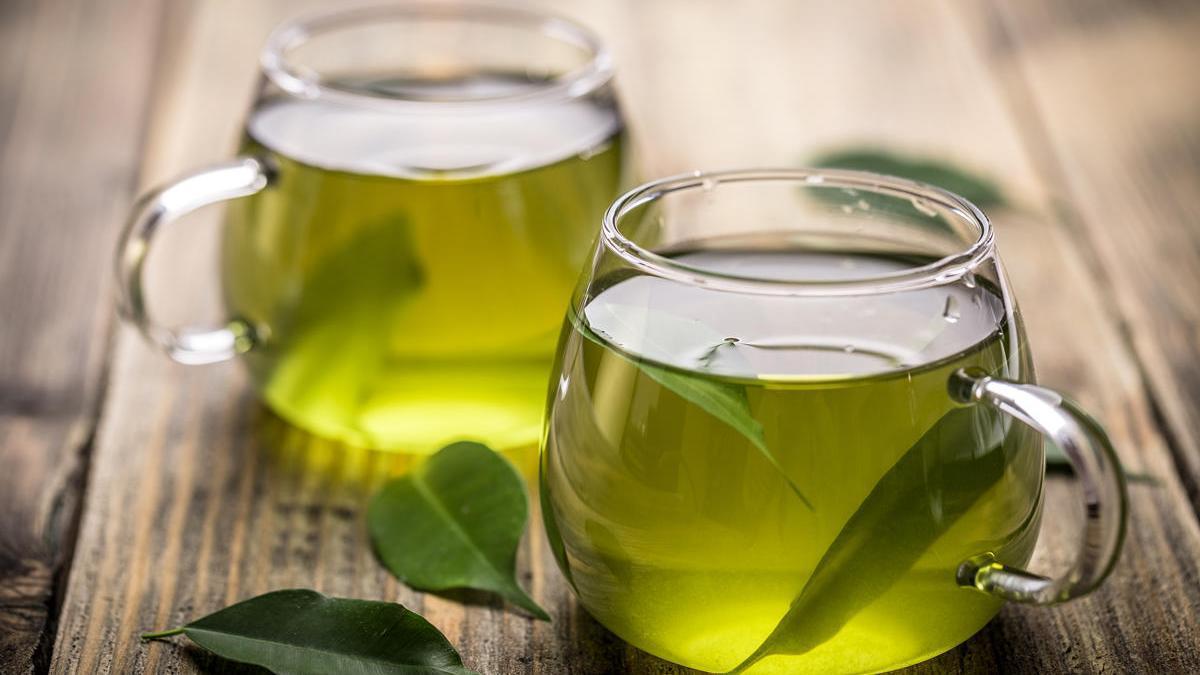 Beber té verde aumenta la abundancia de FP que suprime la respuesta inmune Th2