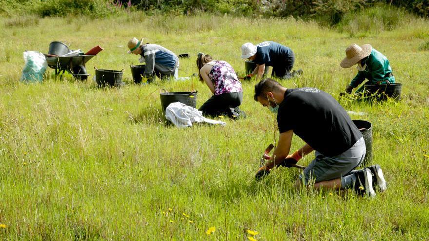 Impulsan un proyecto de conservación y restauración de hábitats en la Reserva Mariñas Coruñesas