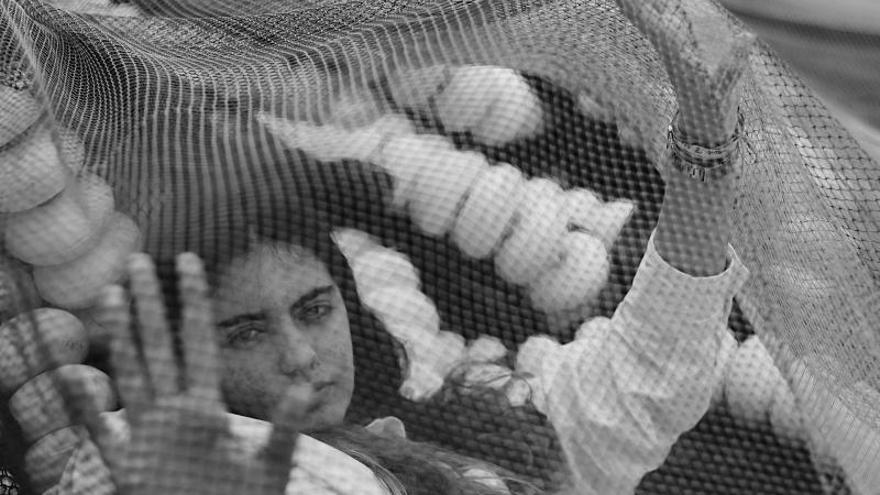 Sanxenxo y Catoira, cuna de jóvenes con talento fotográfico