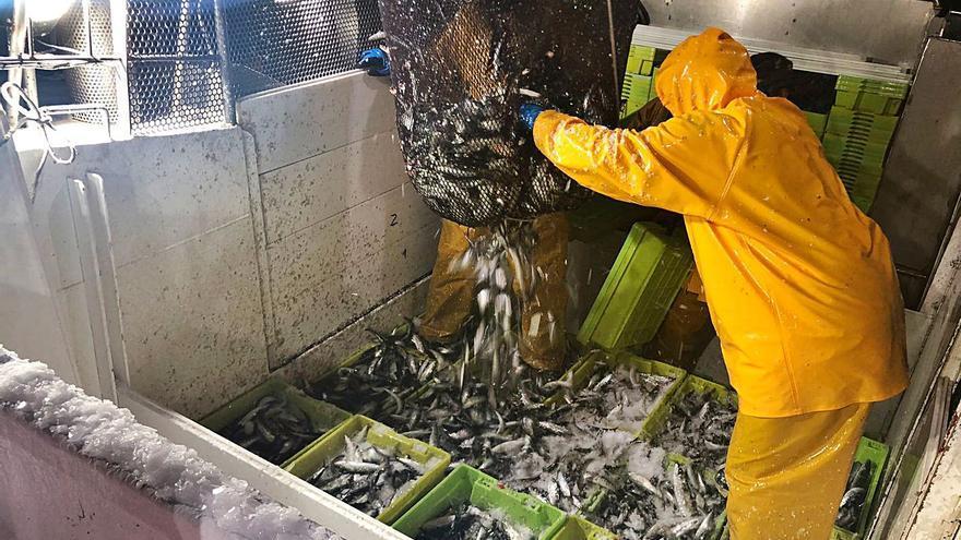 Esta plataforma conecta a los armadores para que intercambien cuotas de pesca