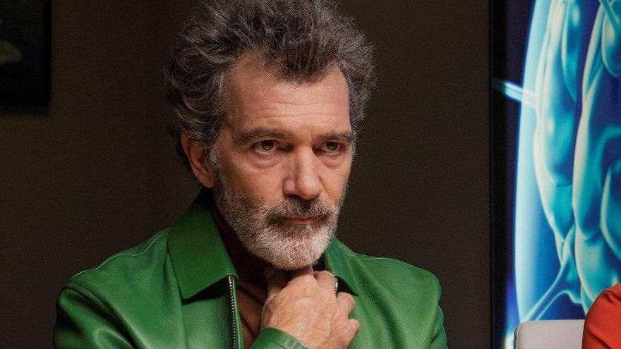 'Dolor y gloria', nominada en los Premios César a mejor película extranjera