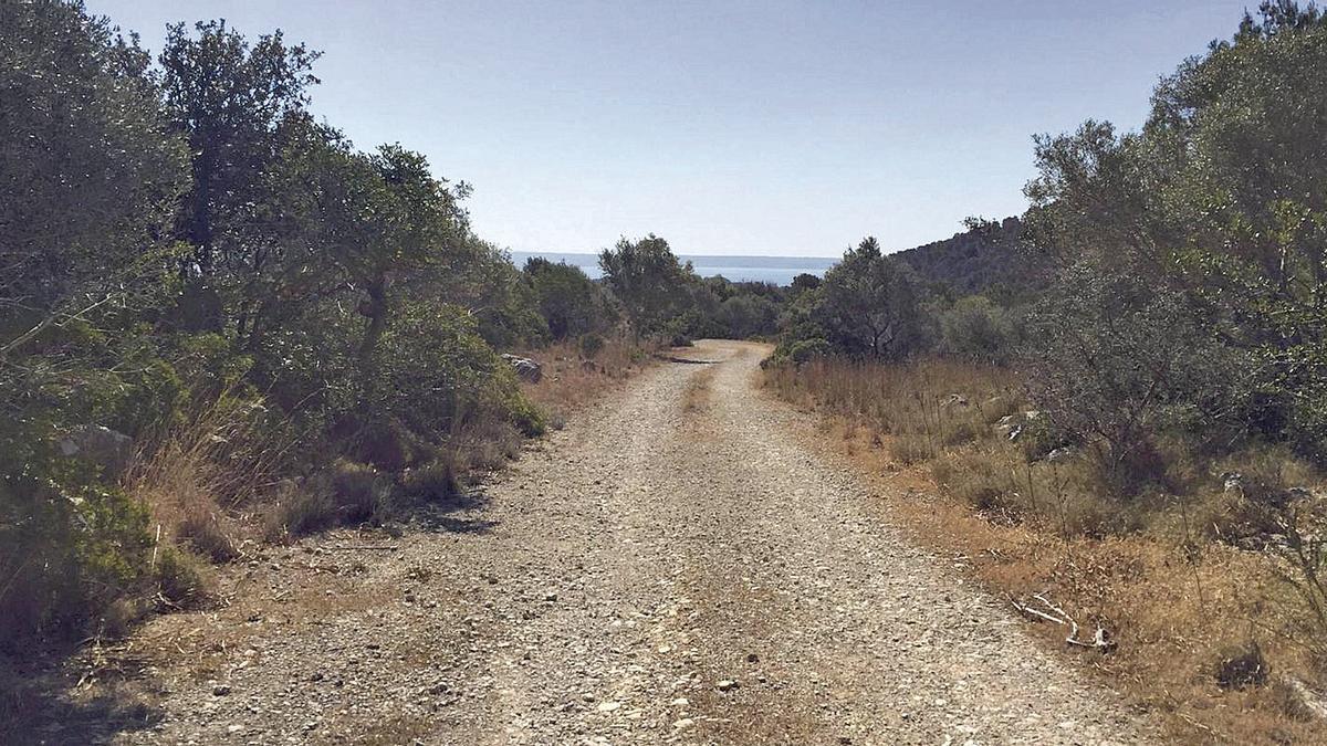 Una parte de los áridos se ha dedicado a la restauración de espacios degradados.