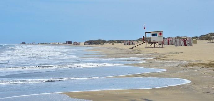 06-05-2020 SAN BARTOLOMÉ DE TIRAJANA. Palomas en Playa del Ingles, en el primer día que se autoriza el acceso a la playa. Fotógrafo: Andrés Cruz    06/05/2020   Fotógrafo: Andrés Cruz