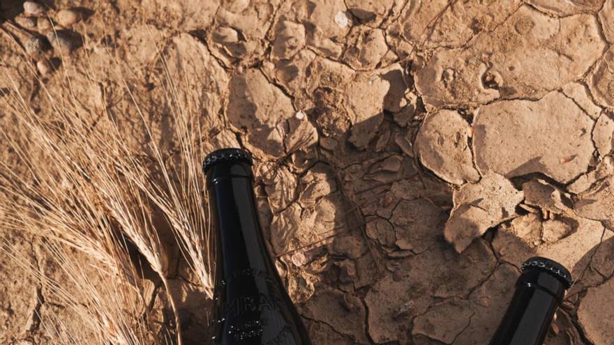 Ambar Trigal: el sabor del desierto de Monegros