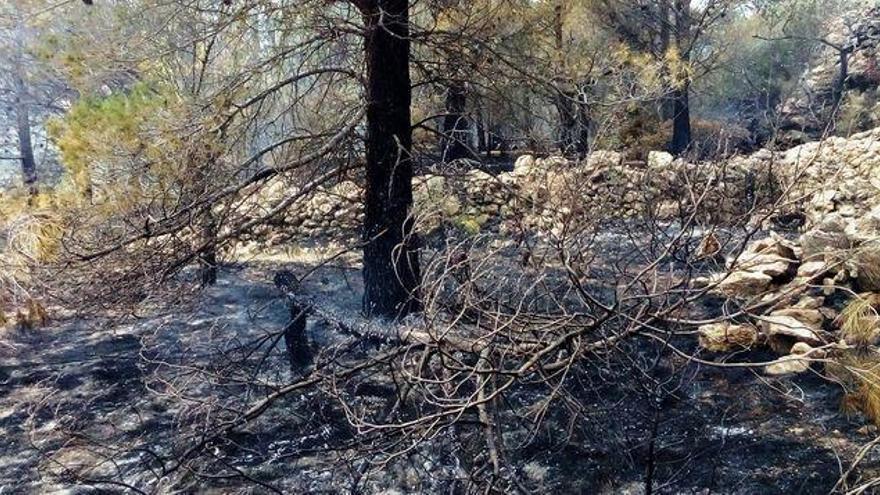 La Guardia Civil investiga a una persona por un incendio forestal en Xert