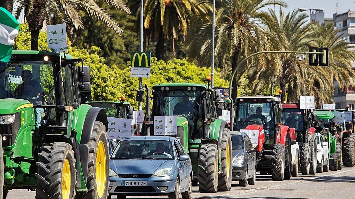 Los tractores gaditanos llenaron ayer las calles de Jerez de la Frontera.