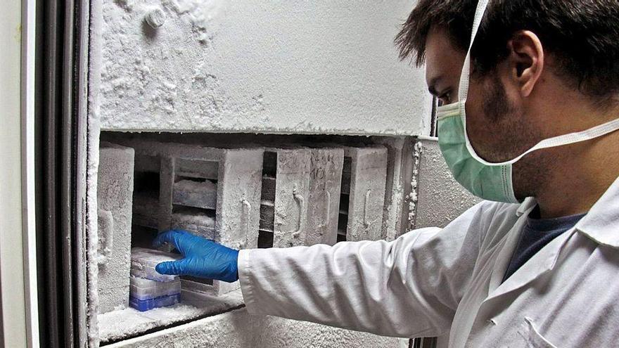 El primer contagio fue en Valencia el 1 de febrero