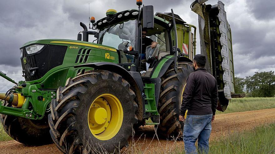 Al 80% de los jóvenes rurales de Zamora les gustaría ser agricultores o ganaderos