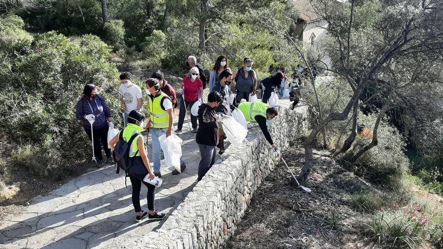 Unas 30 personas participan en una jornada de limpieza en el bosque de Bellver