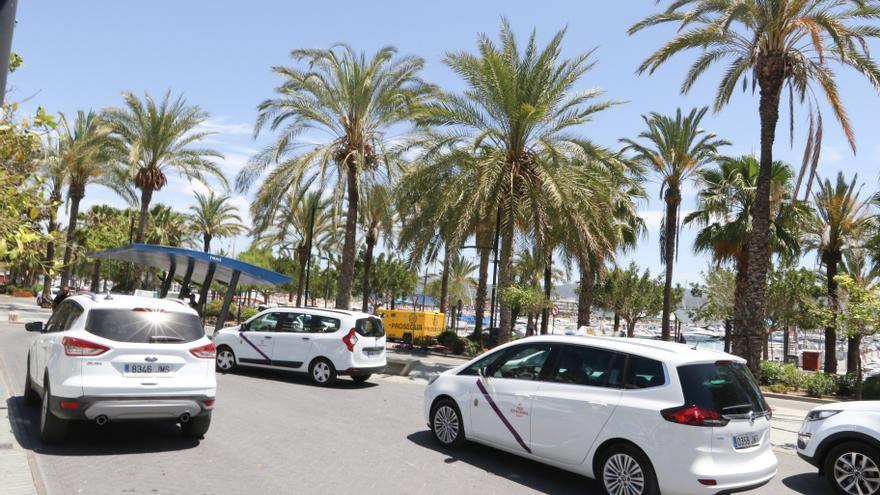 Los taxistas de Sant Antoni sólo podrán abrigarse con un cárdigan
