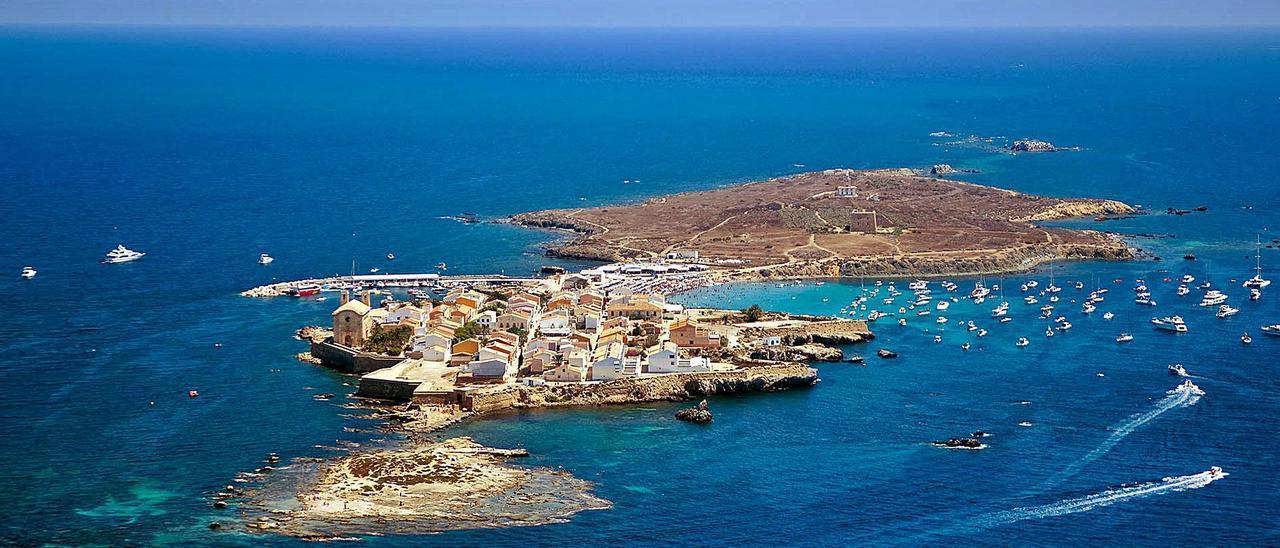 La isla de Tabarca, refugio de las más diversas especies del medio marino. | INFORMACIÓN
