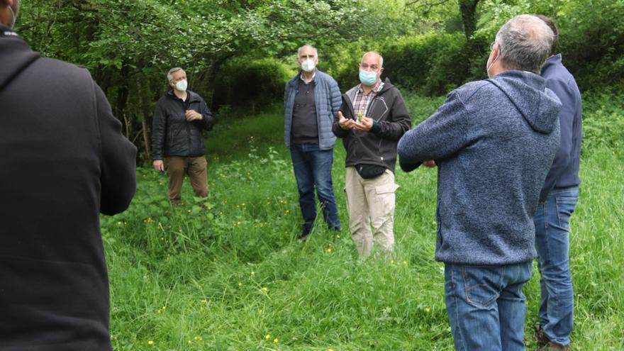L'Associació Sèlvans calcula que només hi ha un 1,42% dels boscos protegits