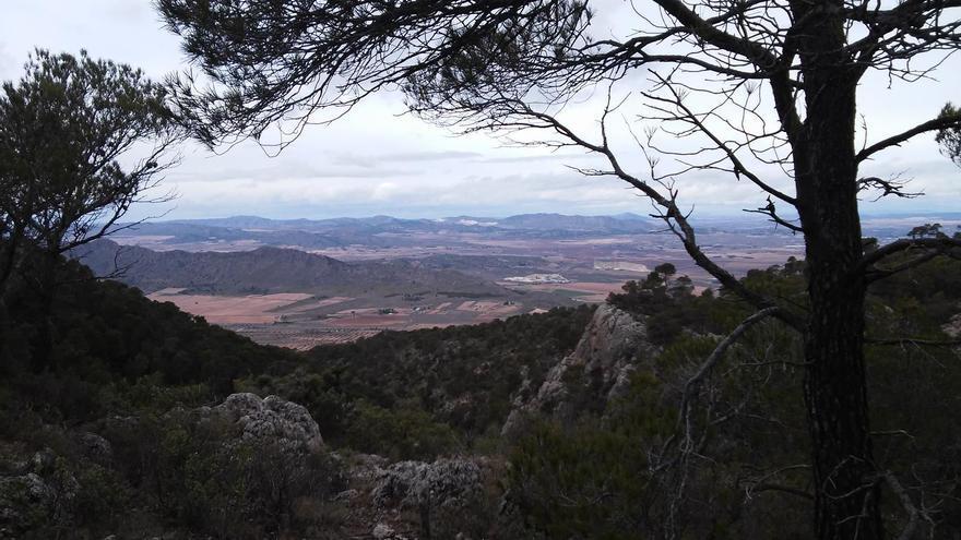 Medio Ambiente busca más protección para Sierra Salinas, Cabecicos y Salero de Villena