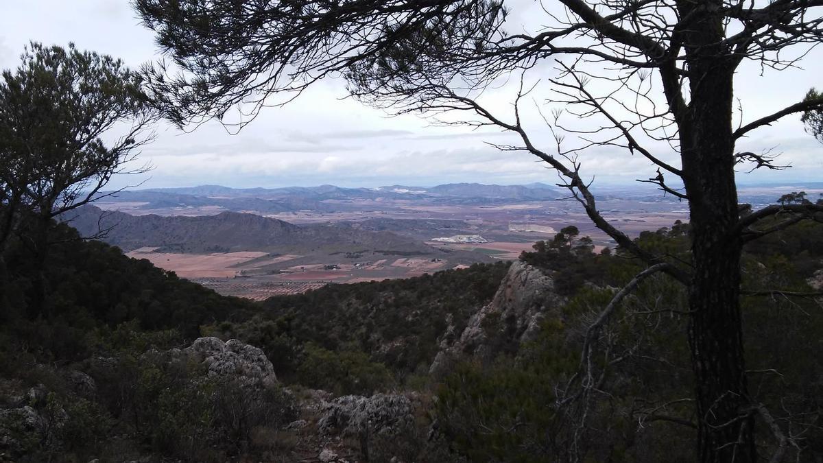 Imagen panorámica de la Sierra Salinas en el término municipal de Villena.
