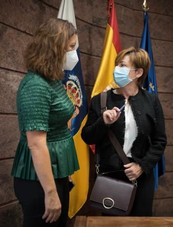 La rectora de la ULL en el Parlamento