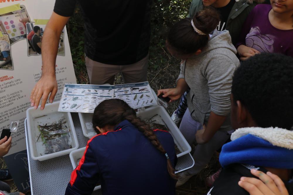 Torrent reinaugura el parque l'Oliveral