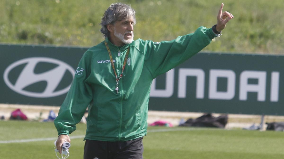 Pablo Alfaro dirigirá la sesión del Córdoba CF, este miércoles, en la Ciudad Deportiva.
