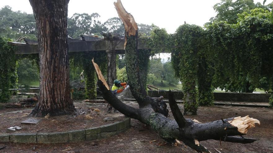 La Asociación Veciñal de Teis denuncia el estado de abandono del parque da Riouxa
