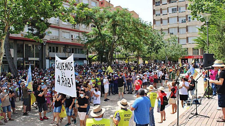 Multitudinaria manifestación en Yecla contra una macrogranja