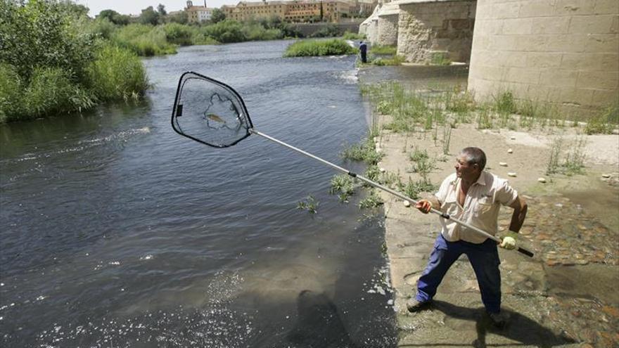La Confederación no cree que hubiera metales pesados en el vertido al río