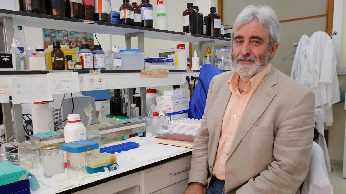 Andreu Palou, investigador de la UIB