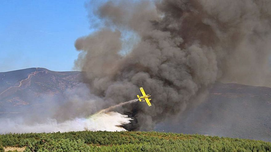 GALERÍA | La ola de calor deja cinco incendios el sábado en Sanabria