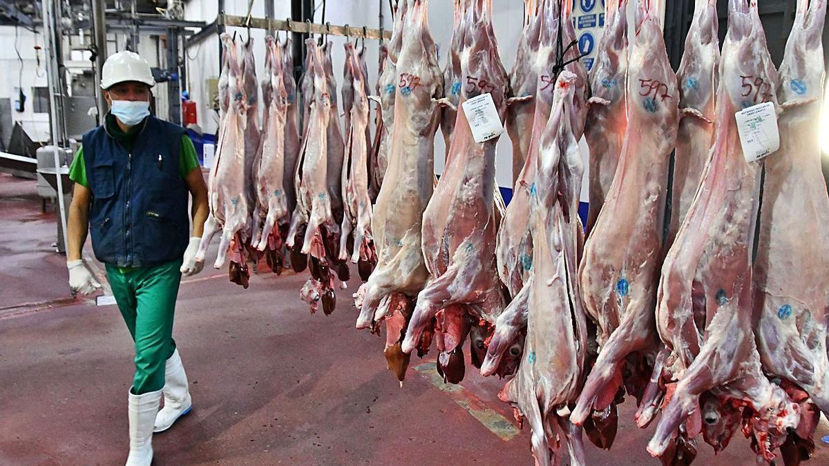 Admitida una demanda al Matadero por incumplir los ritos de la carne 'halal'