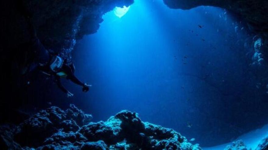 Los peces abisales también combaten el cambio climático