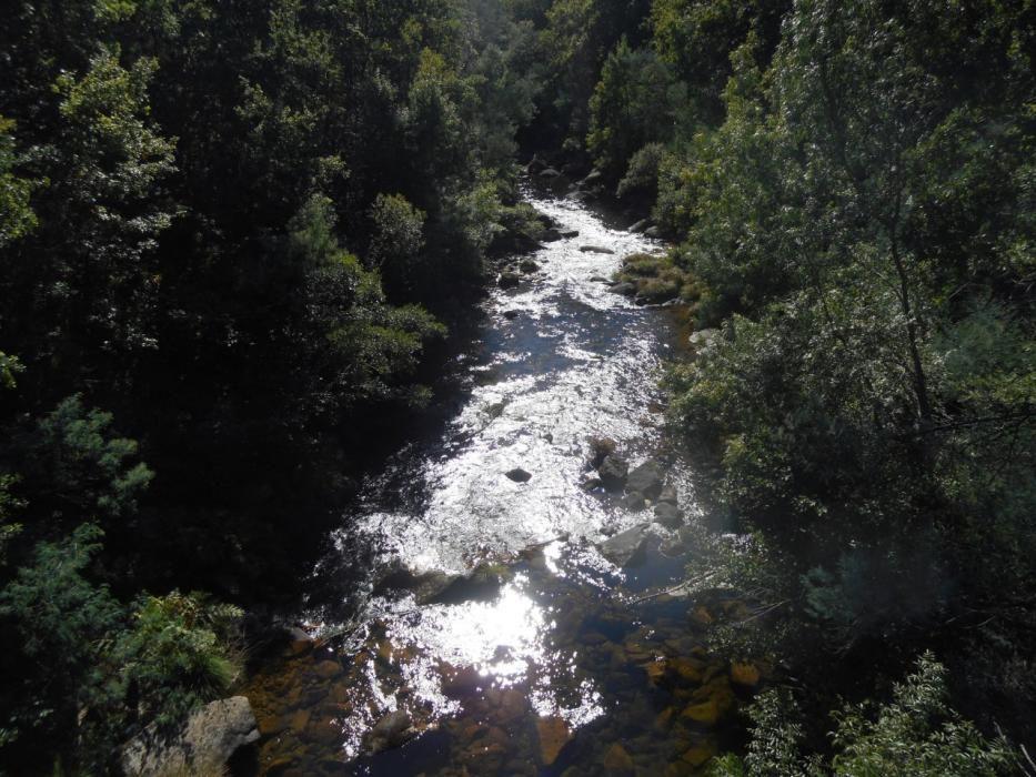 Puentes colgantes en Galicia | Así es la vertiginosa pasarela de Calvelo