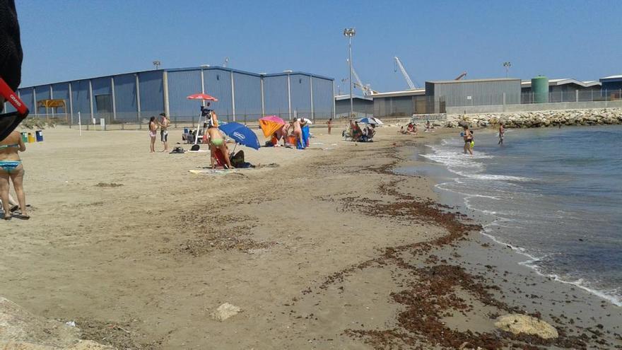 Reabre la playa de Venècia de Gandia al desaparecer la presencia de bacterias