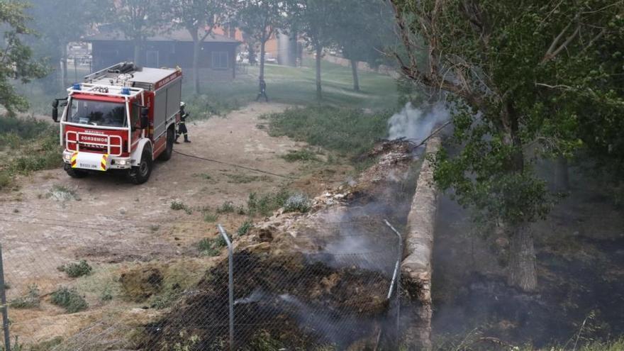 Los bomberos sofocan el incendio originado por las pelusas en la avenida de la Frontera, junto a la fábrica de Gaza y el arroyo de Valorio de Zamora.