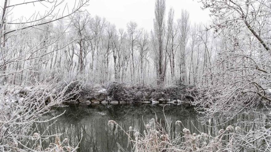 Los paisajes se tiñen de blanco por la cencellada