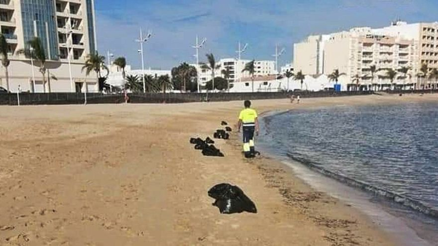 Limpieza y desinfección de la playa del Reducto