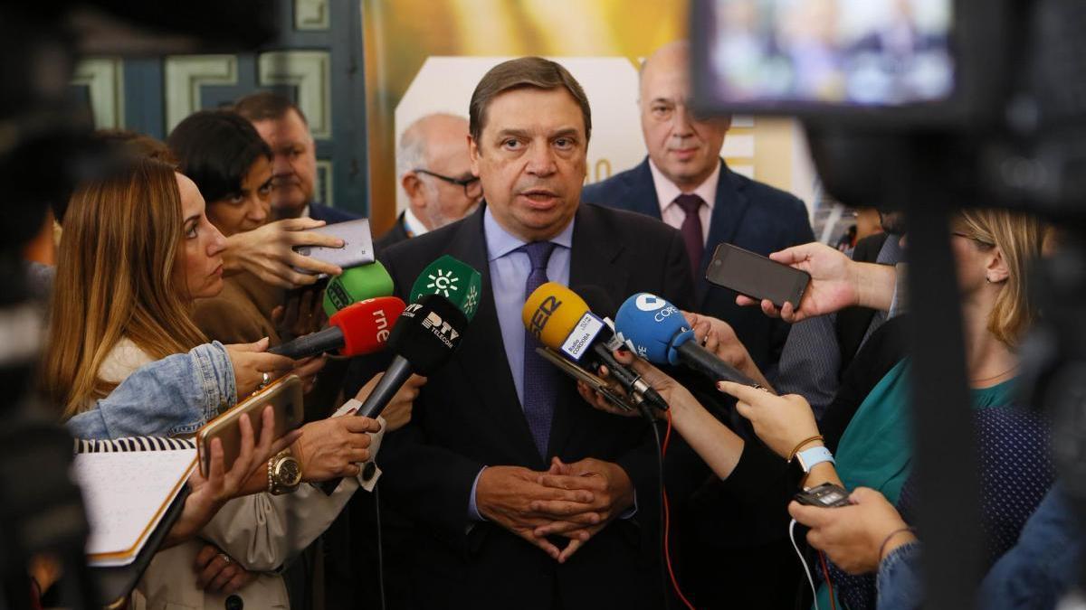"""El Gobierno responderá """"en la medida de todas las posibilidades"""" ante la evolución de los precios del aceite"""
