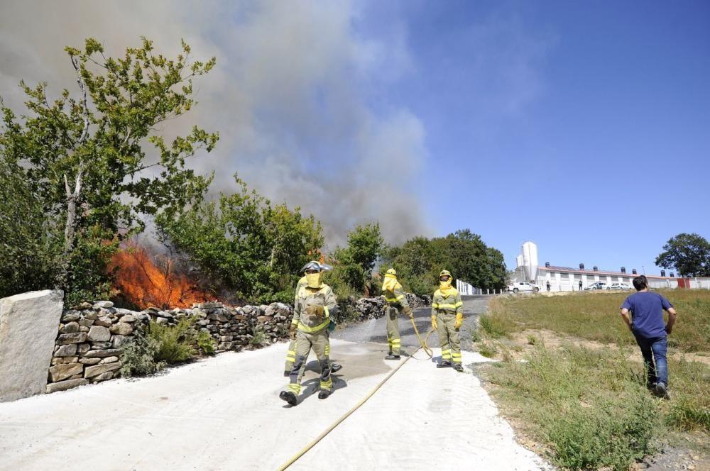 Las imágenes del incendio de Rodeira. // Bernabé | Javier Lalín