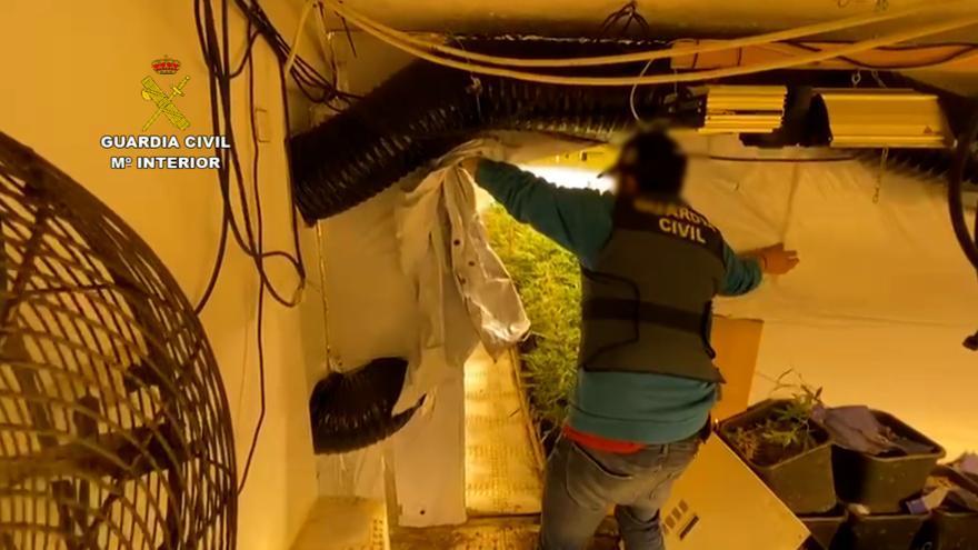 La Guardia Civil destapa dos sofisticadas plantaciones de marihuana indoor en Alicante
