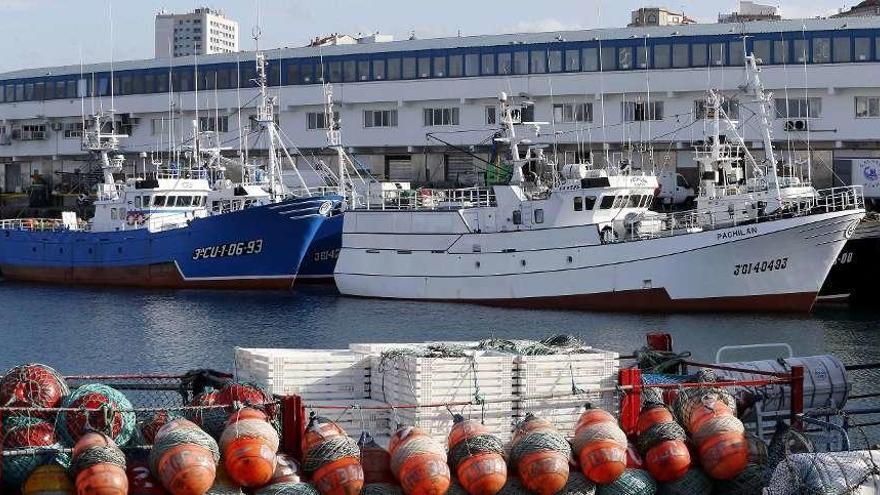 """El sector pesquero advierte de las repercusiones económicas del """"tijeretazo"""" a la cuota de merluza"""