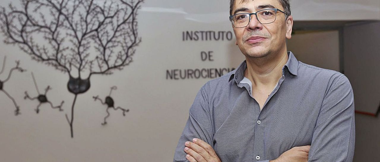 El nuevo director del Instituto de Neurociencias, Ángel Barco.