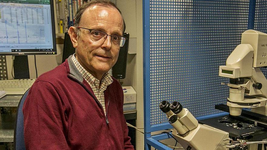 Antonio Ferrer Montiel, en uno de los laboratorios del campus de Elche de la UMH. | ANTONIO AMORÓS