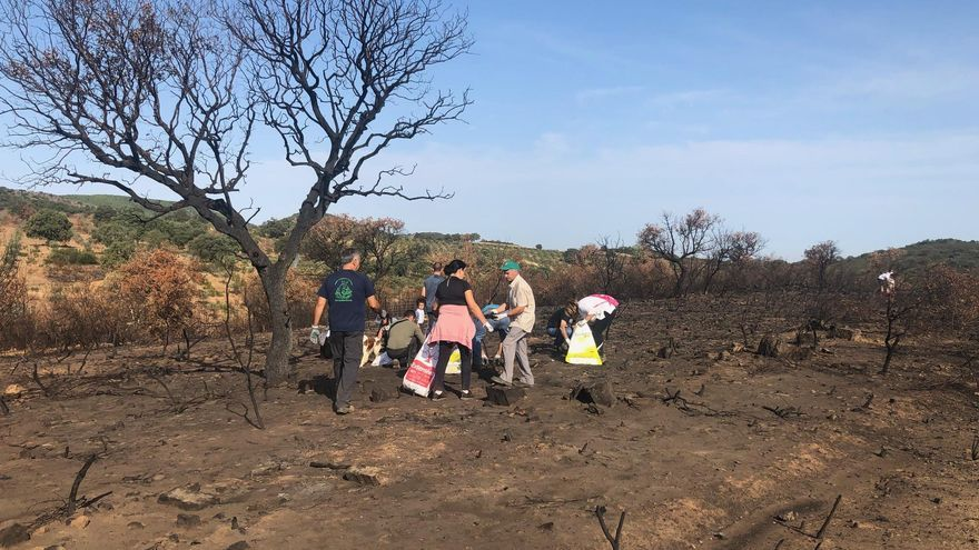 Vecinos de Alcaracejos limpian de basura la zona devastada por el fuego