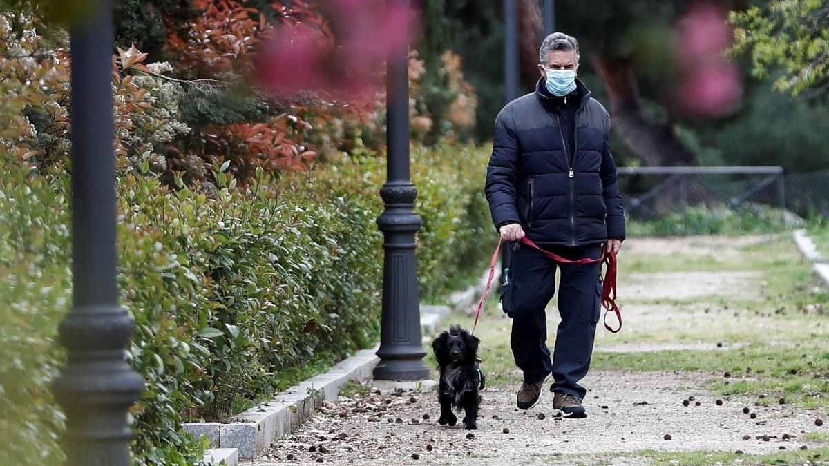Un hombre pasea a su perro en Madrid.