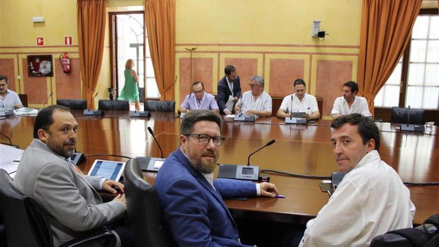 La Junta extremará la vigilancia para frenar el 'ébola del olivo'