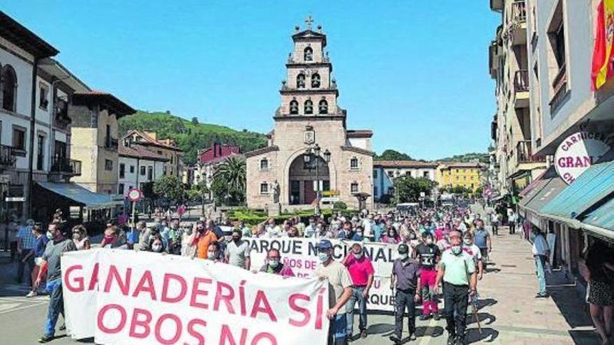 """Barbón: """"Lo inteligente sería llevar el plan asturiano del lobo a todo el país"""""""
