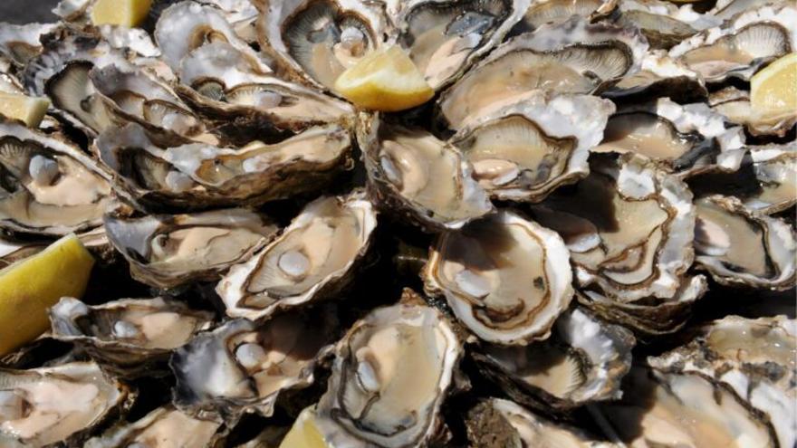 Los elementos tóxicos de las colillas van a parar a las ostras