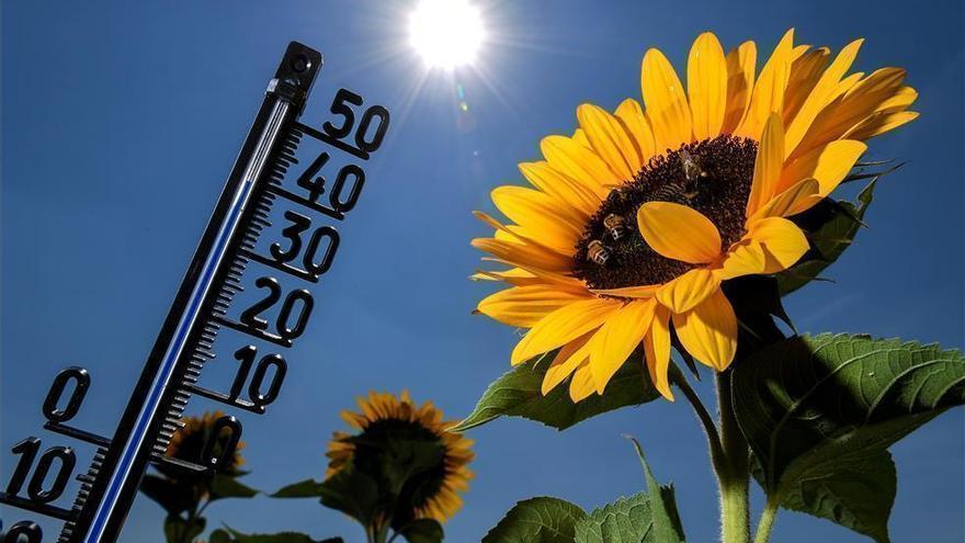 El tiempo en Córdoba: los termómetros rozarán de nuevo máximas de 40 grados esta semana